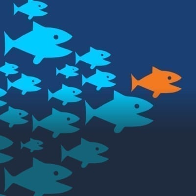 How can we identify that who are (or will be) good leaders?